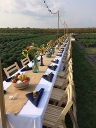give us a kiss - 23