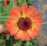 give us a kiss - 48